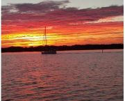 The Sunset Dolphin Watch - Captain Johnny's Dolphin Tours
