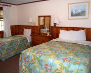 Queen + Twin Room - Dare Haven Motel
