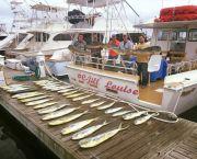 Private Charters & Cruises - Jill Louise Headboat