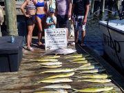 OBX Marina, 7-14-20