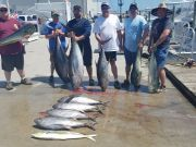 Phideaux Fishing, 120 pounder,  100 pounder