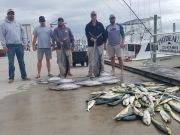 Phideaux Fishing, 70 and 80 pound tuna with mahi and other stuff