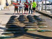 OBX Marina, Dolphin & Tuna for the Win