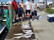 Fishin' Fannatic, Great Fishing Here on the Outer Banks