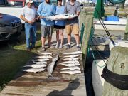 Fishin' Fannatic, Great Day Offshore here on the Outer Banks