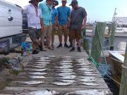Fishing Taxi Sportfishing, Love to go fishing