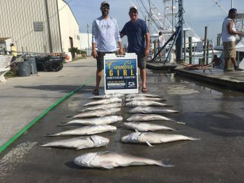 Carolina Girl Sportfishing Charters Outer Banks, The year for tile fishing