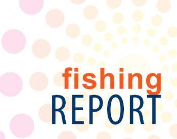 Fishing Taxi Sportfishing, OBX hurricanes