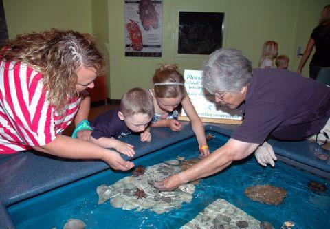 North Carolina Aquarium on Roanoke Island, Quarantine Tour