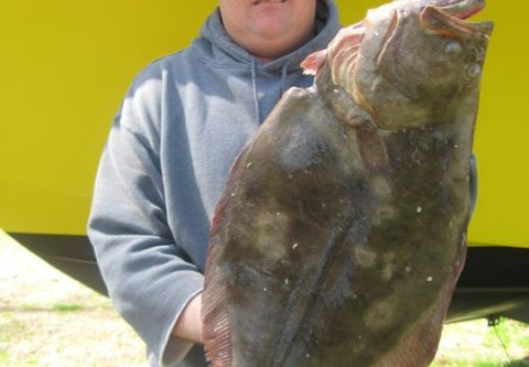 Grandpa's Charters, SPEAR FISHING
