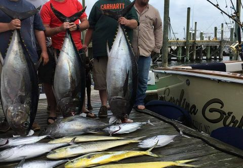 Carolina Girl Sportfishing Charters Outer Banks, Full Day Offshore Big Game Charter