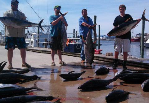 Phideaux Fishing, Make-Up Fishing Charter